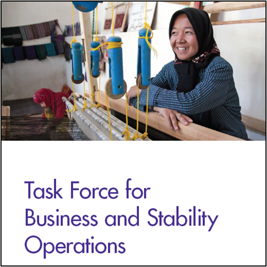 Report assesses business and stability operations task force